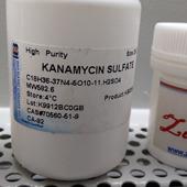 Bio Basic kanamycin 500mg