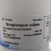 Bio Basic Streptomycin   500 mg