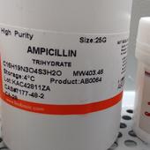 Bio Basic Ampicillin 1 gr