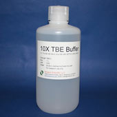 ZandBio 10X TBE Buffer 100mL